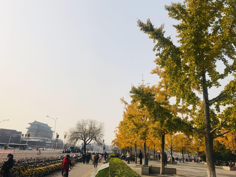 報名有禮|香港浸會大學2019/20研究生課程展北京站本週六登場!
